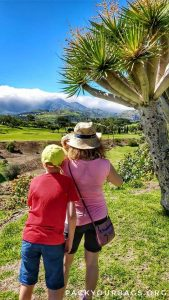 Best Hikes on Gran Canaria